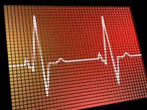 Heart Rate Monitor Shows Cardiac And Coronary Health
